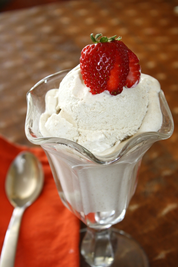 Paleo Vanilla Ice Cream