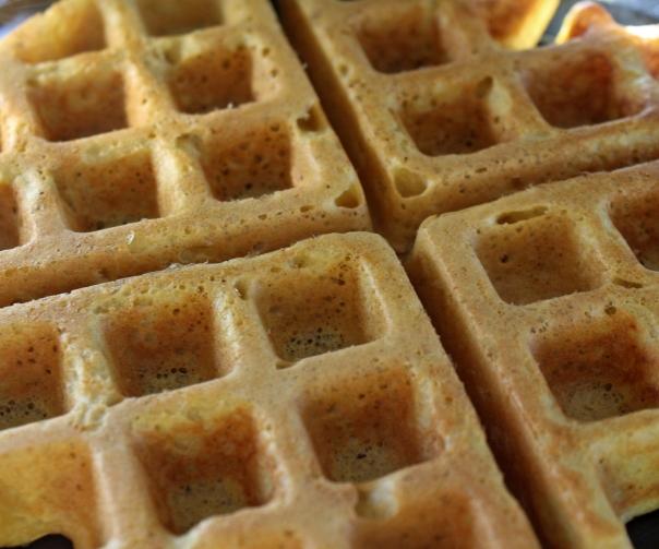 Paleo Gluten-Free Plantain Waffles